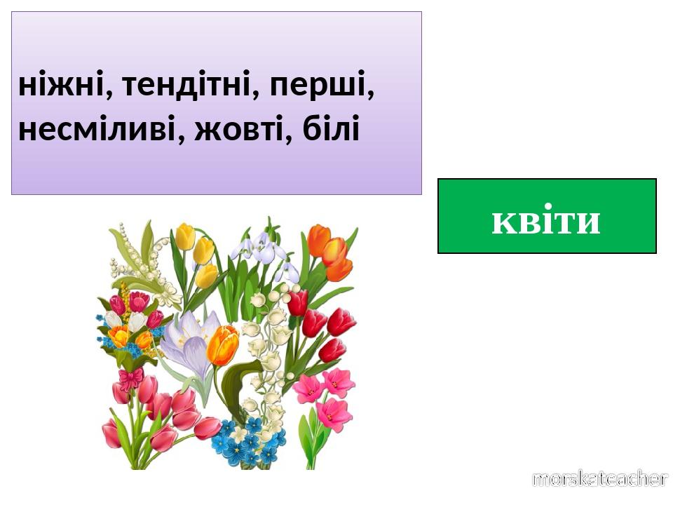 квіти ніжні, тендітні, перші, несміливі, жовті, білі