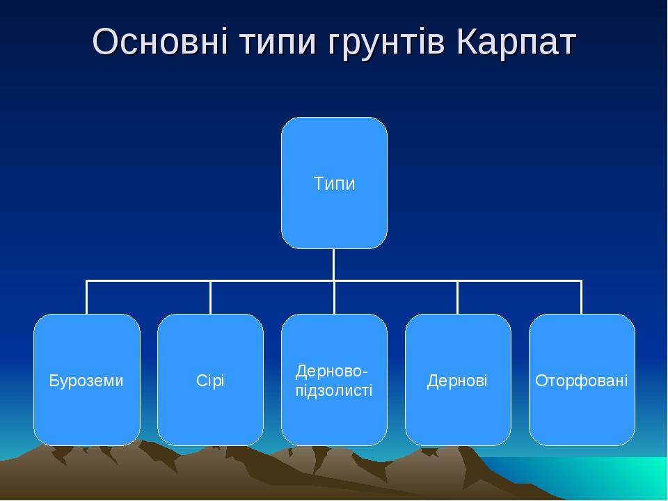 Основні типи грунтів Карпат