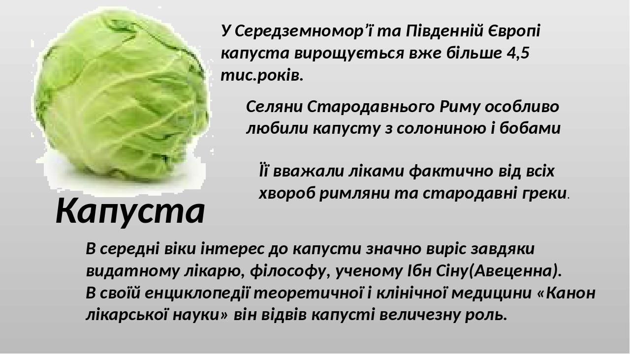 Капуста У Середземномор'ї та Південній Європі капуста вирощується вже більше 4,5 тис.років. Селяни Стародавнього Риму особливо любили капусту з сол...