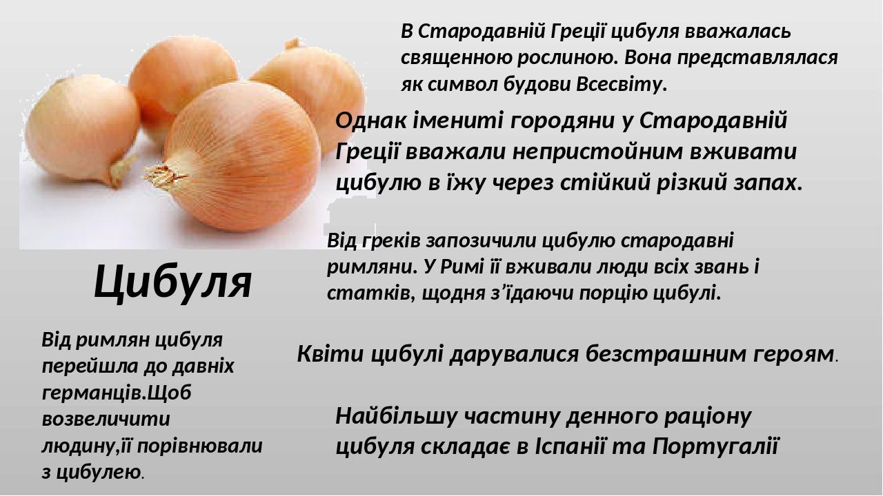 Цибуля В Стародавній Греції цибуля вважалась священною рослиною. Вона представлялася як символ будови Всесвіту. Однак імениті городяни у Стародавні...