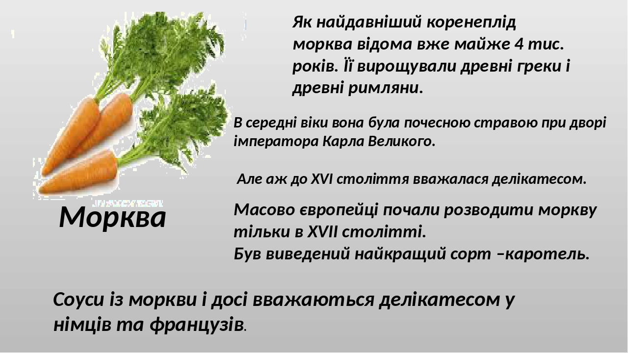 Морква Як найдавніший коренеплід морква відома вже майже 4 тис. років. Її вирощували древні греки і древні римляни. В середні віки вона була почесн...
