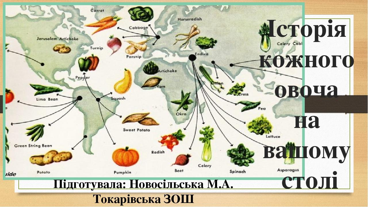 Історія кожного овоча на вашому столі Підготувала: Новосільська М.А. Токарівська ЗОШ
