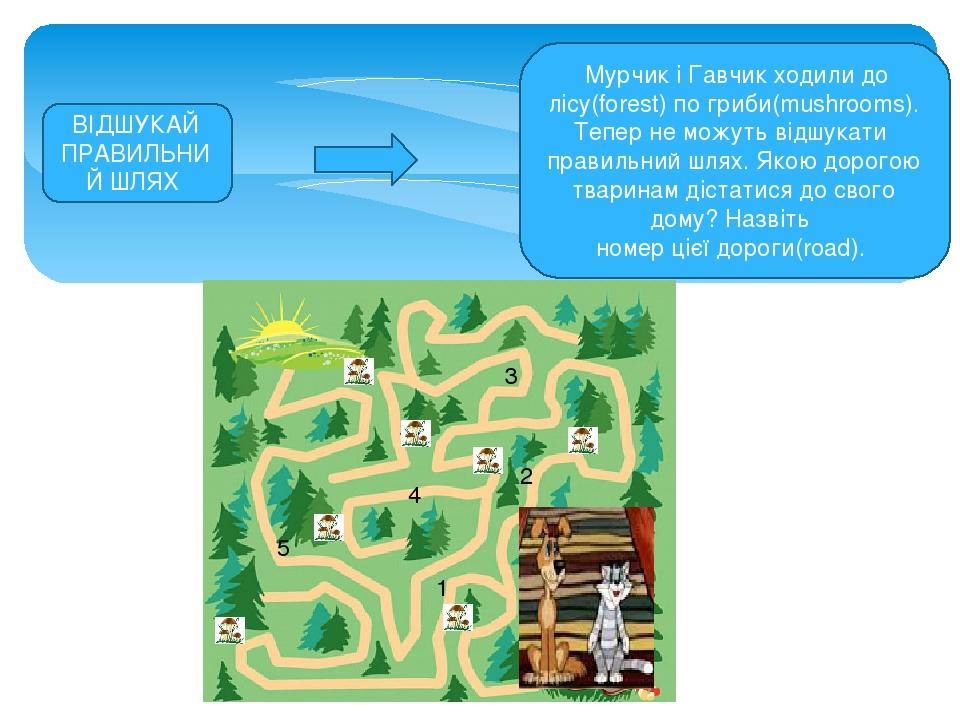 Мурчик і Гавчик ходили до лісу(forest) по гриби(mushrooms). Тепер не можуть відшукати правильний шлях. Якою дорогою тваринам дістатися до свого дом...