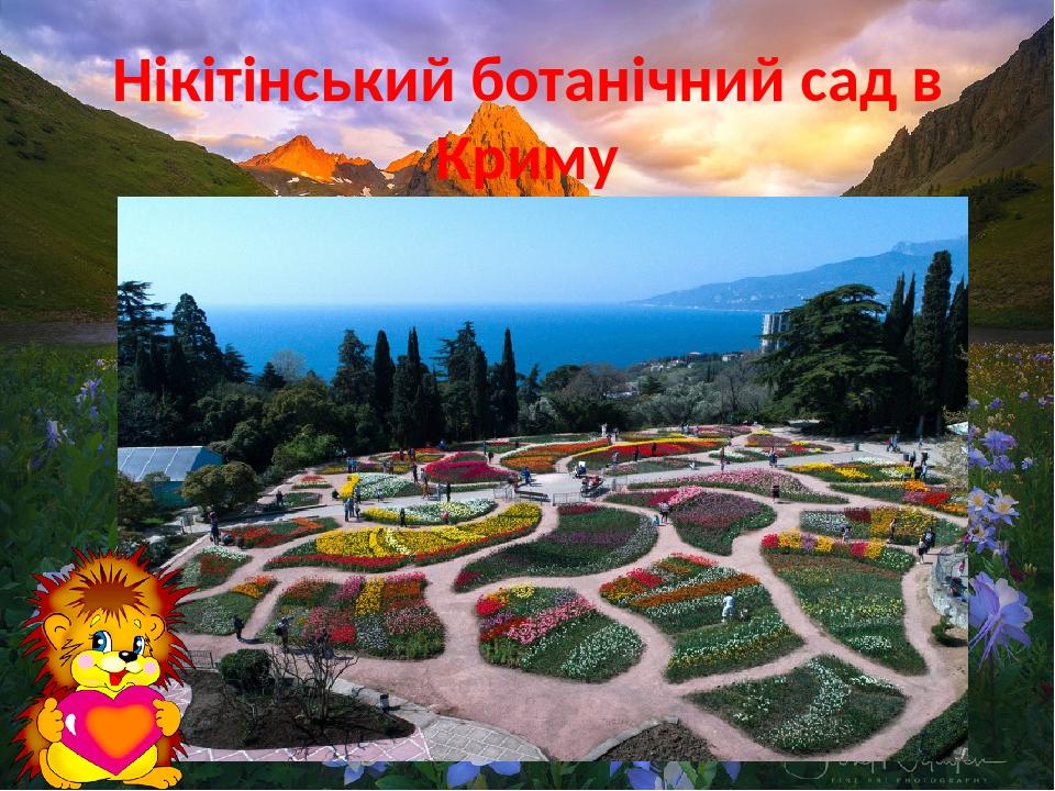 Нікітінський ботанічний сад в Криму