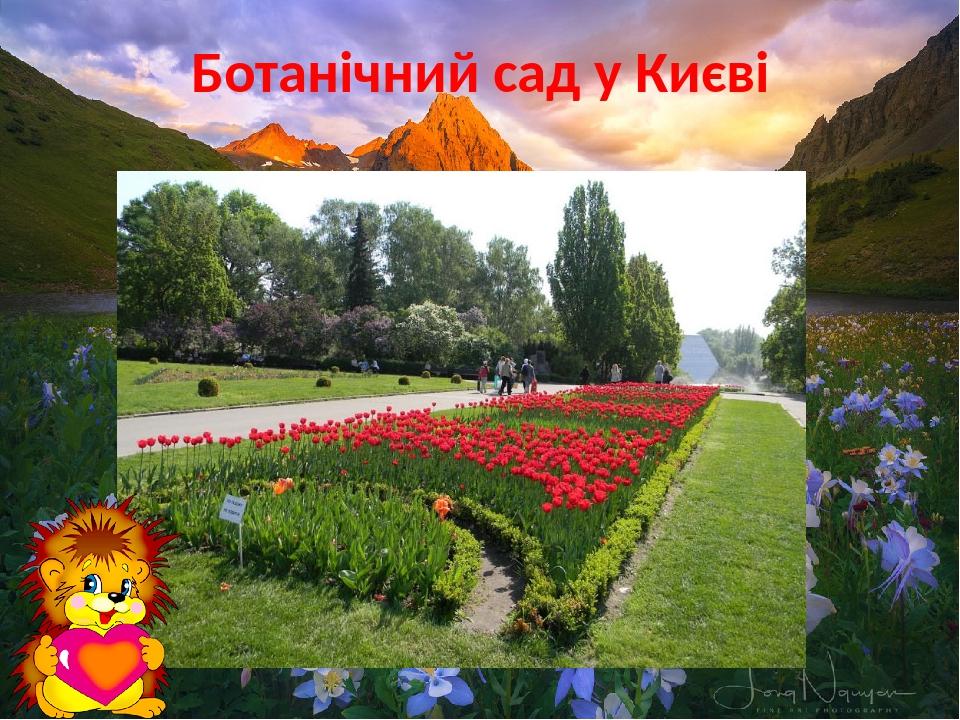 Ботанічний сад у Києві
