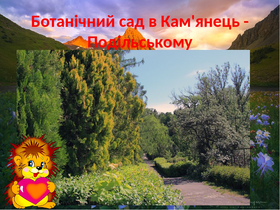 Ботанічний сад в Кам'янець - Подільському
