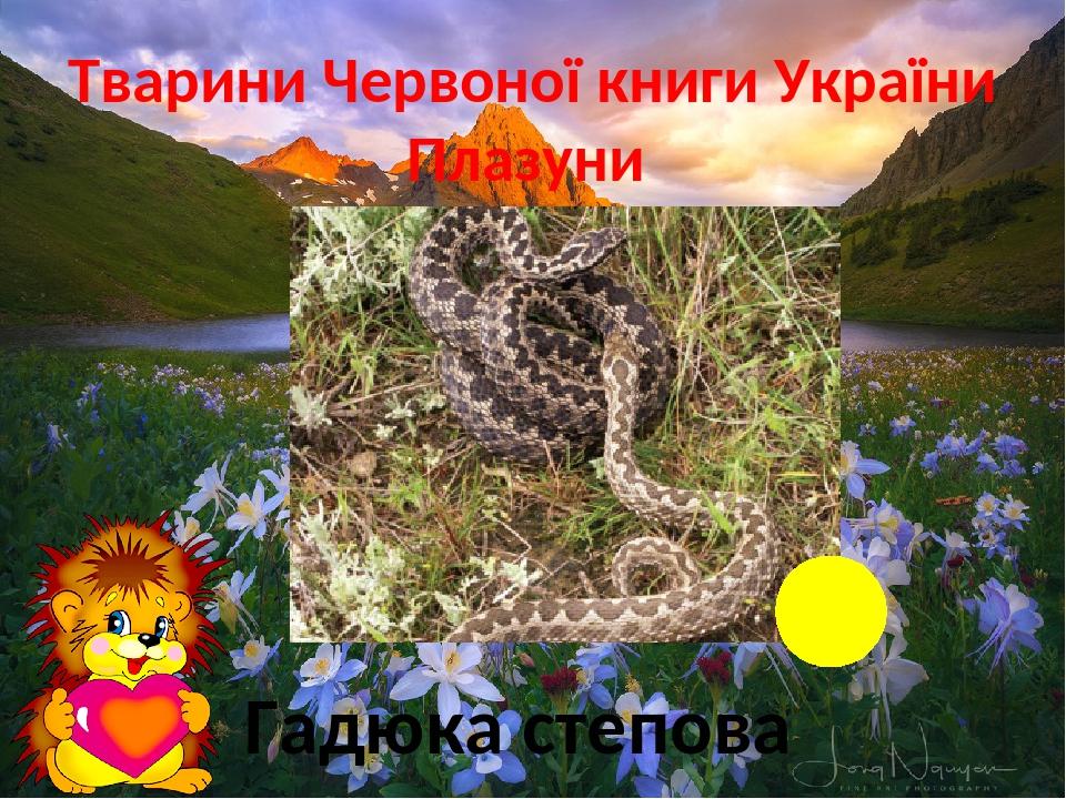 Тварини Червоної книги України Плазуни Гадюка степова