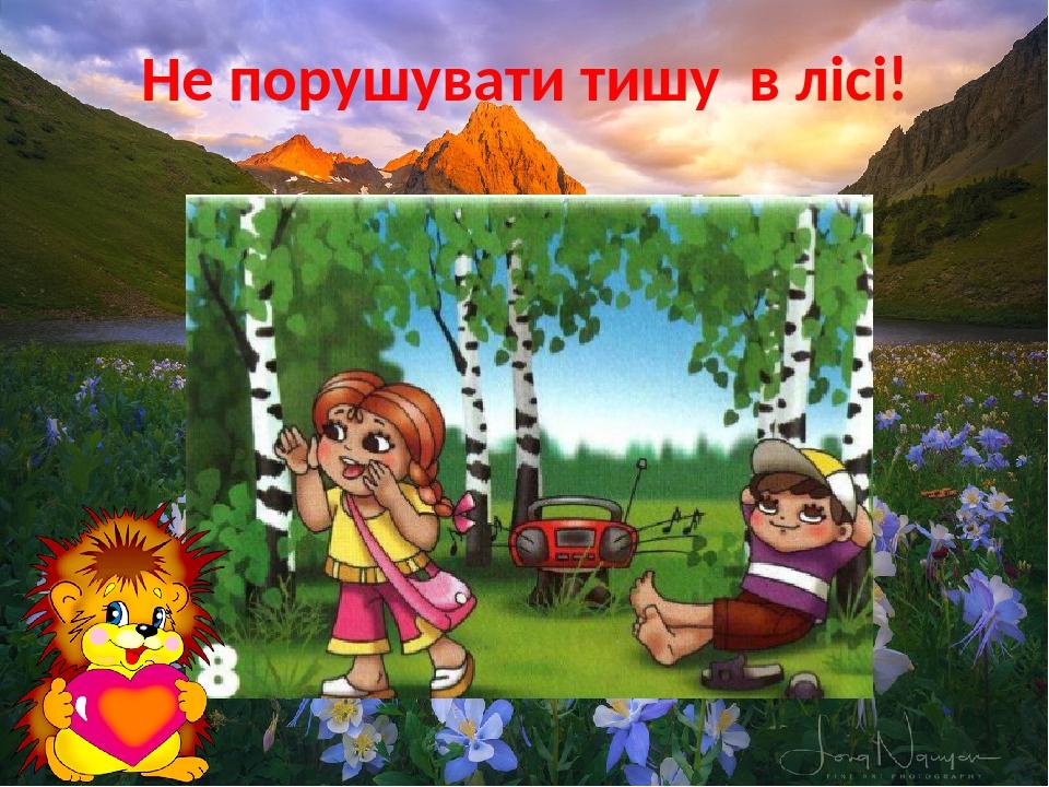 Не порушувати тишу в лісі!