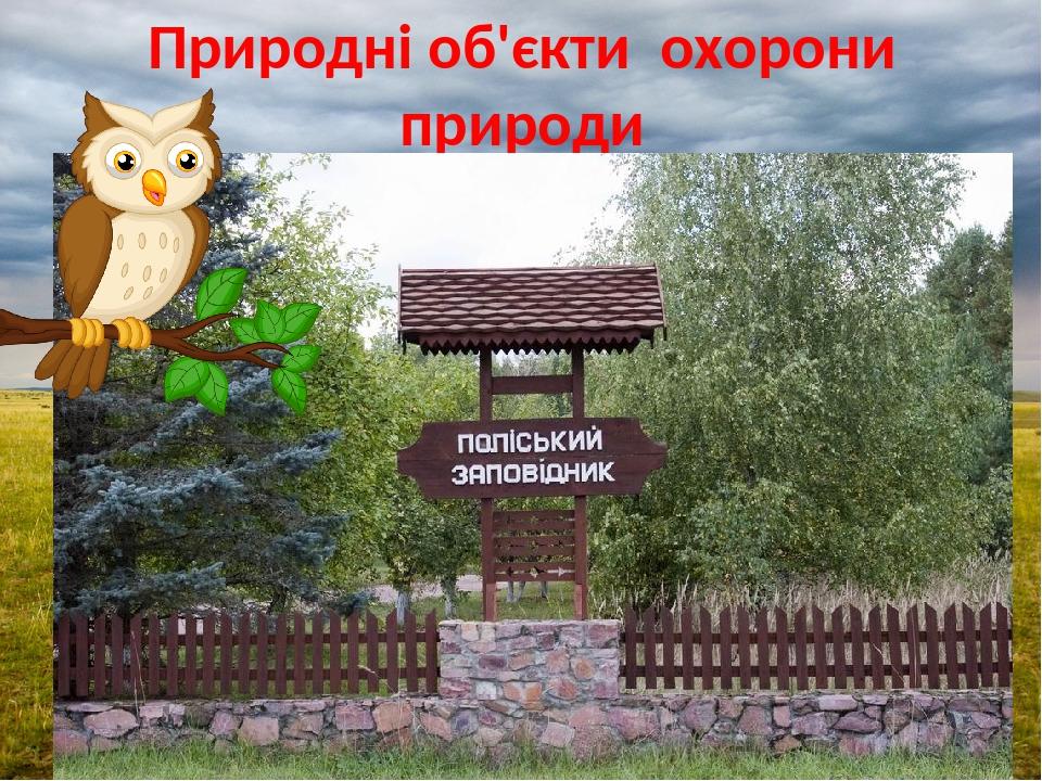Природні об'єкти охорони природи Поліський заповідник
