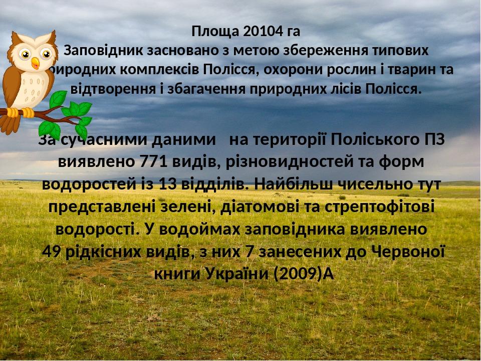 За сучасними даними на території Поліського ПЗ виявлено 771 видів, різновидностей та форм водоростей із 13 відділів. Найбільш чисельно тут представ...