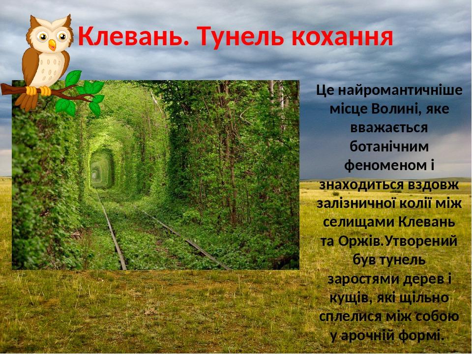 Клевань. Тунель кохання Це найромантичніше місце Волині, яке вважається ботанічним феноменом і знаходиться вздовж залізничної колії між селищами Кл...