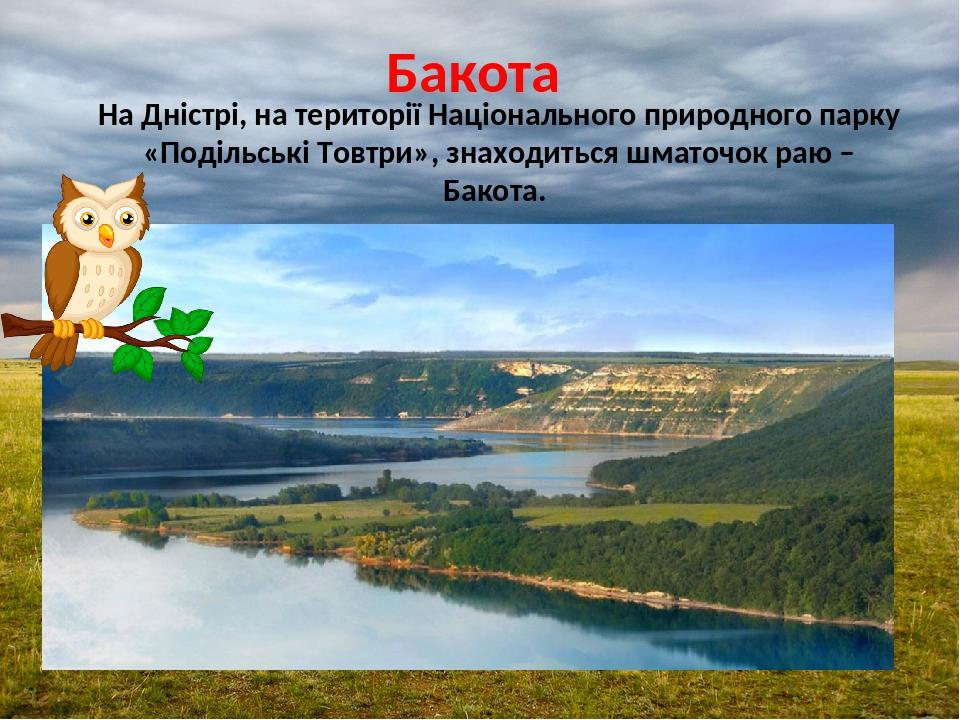 Бакота На Дністрі, на території Національного природного парку «Подільські Товтри», знаходиться шматочок раю – Бакота.