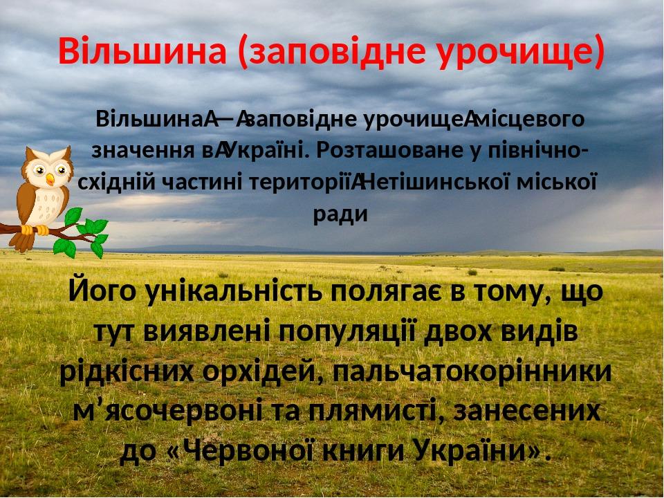 Вільшина (заповідне урочище) Вільшина—заповідне урочищемісцевого значення вУкраїні. Розташоване у північно-східній частині територіїНетішинськ...