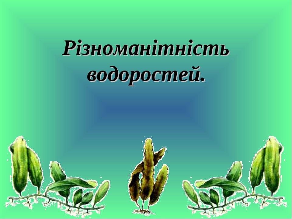 Різноманітність водоростей.