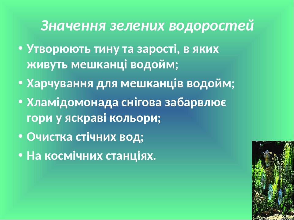 Значення зелених водоростей Утворюють тину та зарості, в яких живуть мешканці водойм; Харчування для мешканців водойм; Хламідомонада снігова забарв...