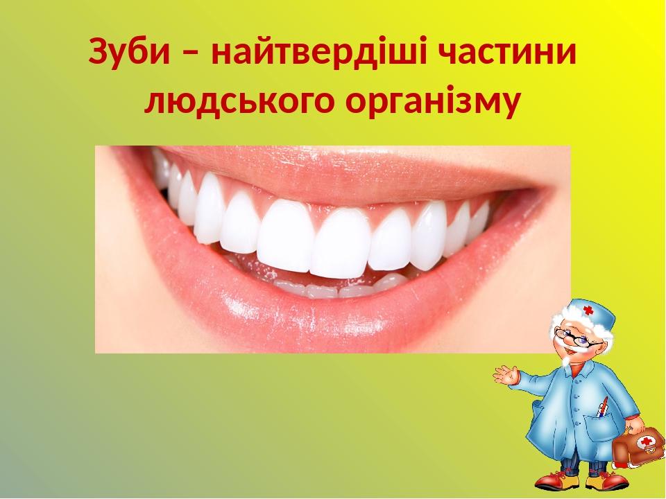 Зуби – найтвердіші частини людського організму