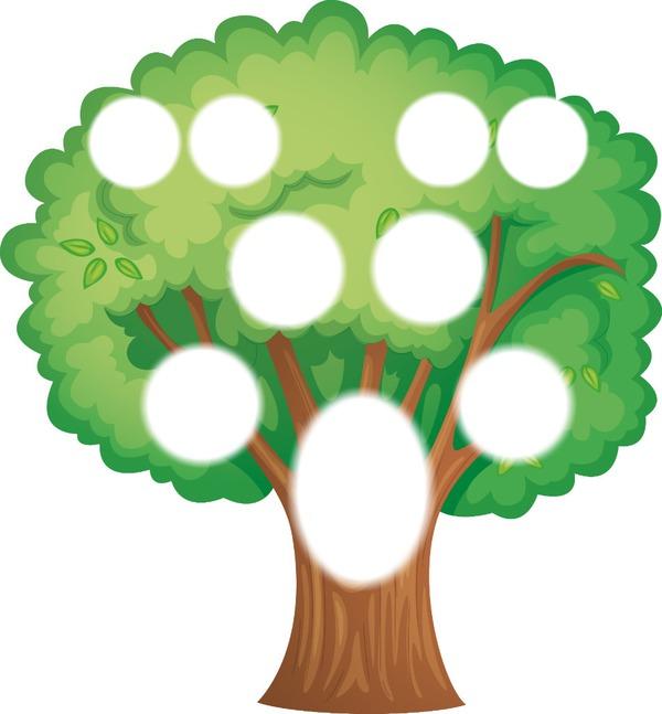 Картинки дерево родословное