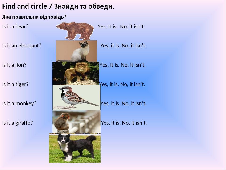Find and circle./ Знайди та обведи. Яка правильна відповідь? Is it a bear? Yes, it is. No, it isn't. Is it an elephant? Yes, it is. No, it isn't. I...