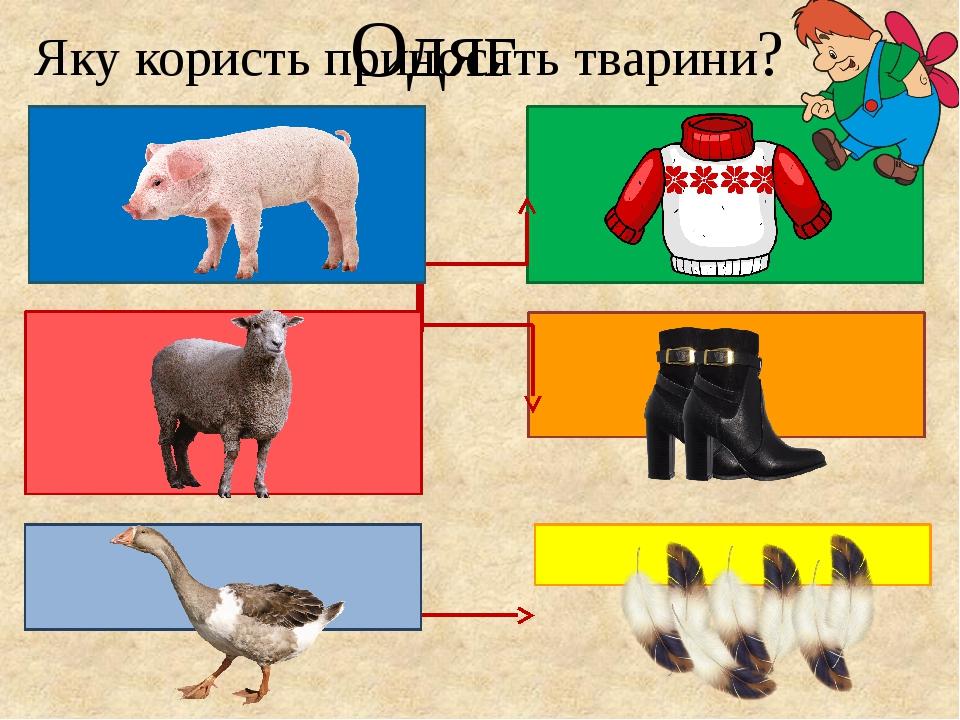 """Презентація """"Яких свійських тварин вирощують в рідному краю?"""""""