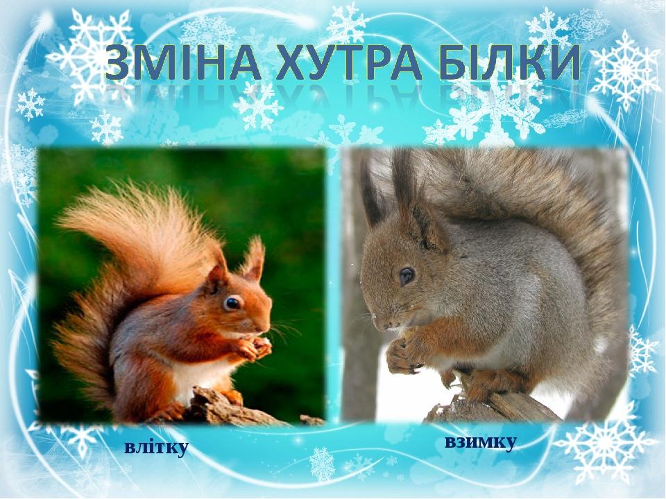 влітку взимку