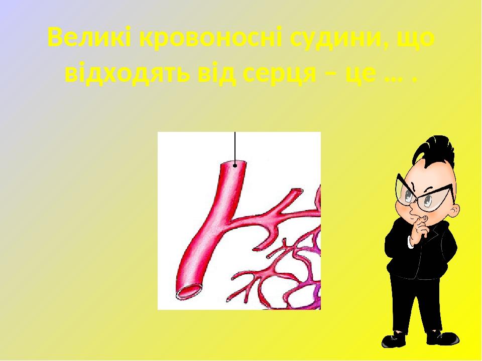 Великі кровоносні судини, що відходять від серця – це … .