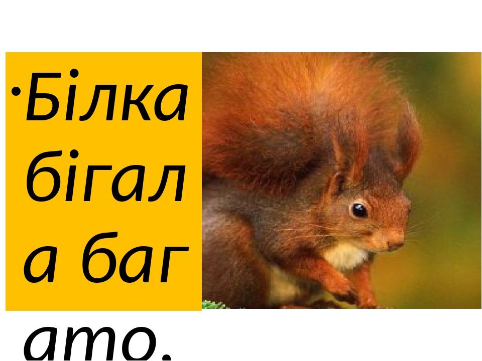 Білка бігала багато, Бо шукала в лісі брата: Брат на дереві сидів І смачні горішки їв. Поки знайде білка брата, Будемо всі букви знати.