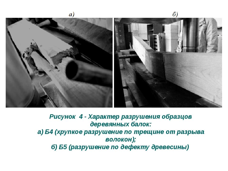Рисунок 4 - Характер разрушения образцов деревянных балок: а) Б4 (хрупкое разрушение по трещине от разрыва волокон); б) Б5 (разрушение по дефекту д...