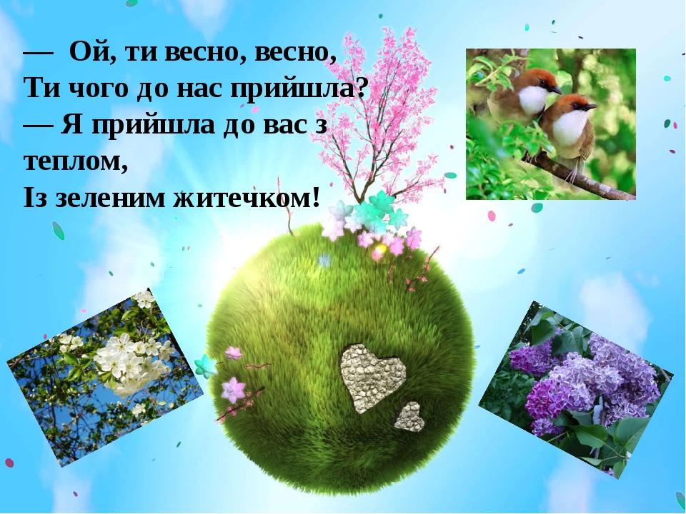 — Ой, ти весно, весно, Ти чого до нас прийшла? — Я прийшла до вас з теплом, Із зеленим житечком!