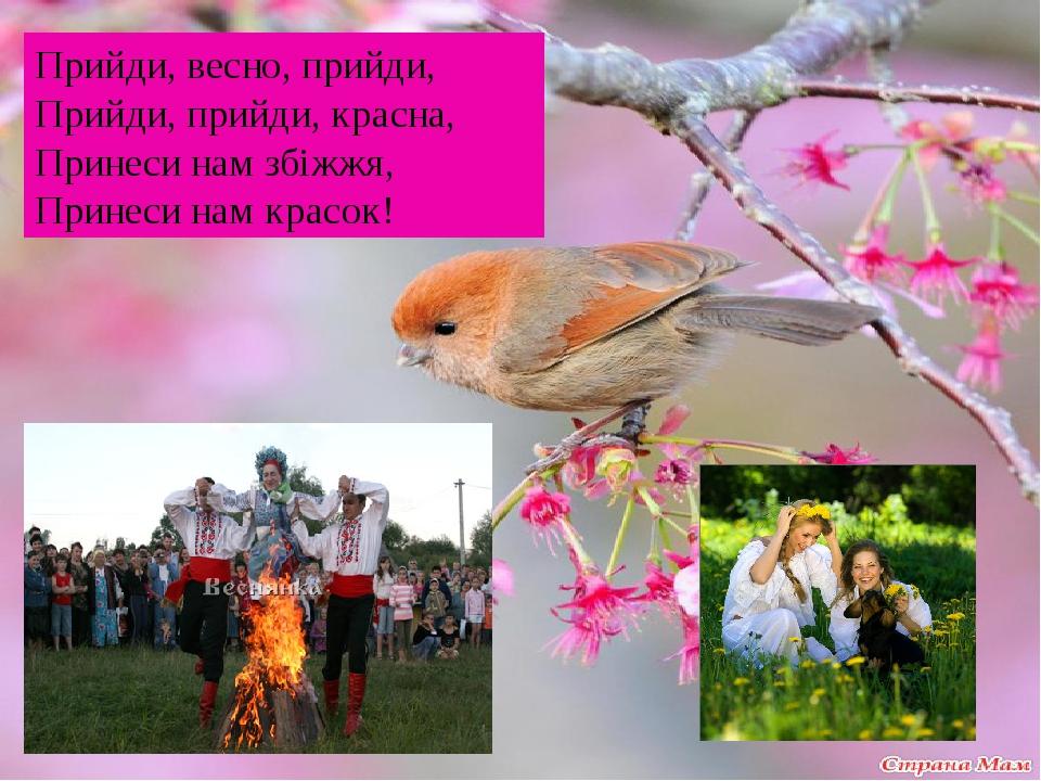 Прийди, весно, прийди, Прийди, прийди, красна, Принеси нам збіжжя, Принеси нам красок!
