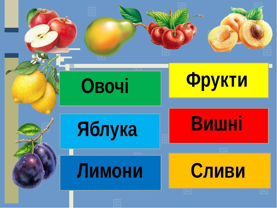 Фрукти Овочі Яблука Вишні Лимони Сливи