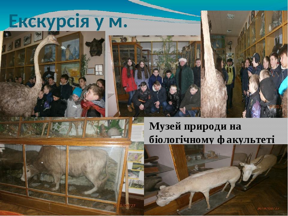 Екскурсія у м. Житомир Музей природи на біологічному факультеті