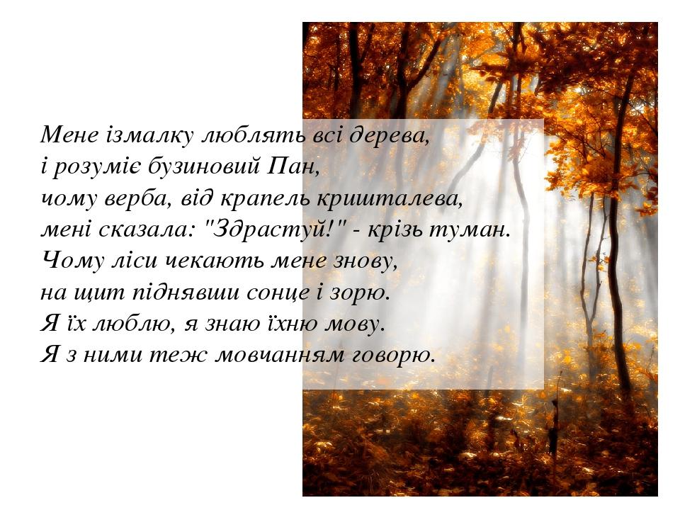 """Мене ізмалку люблять всі дерева, і розуміє бузиновий Пан, чому верба, від крапель кришталева, мені сказала: """"Здрастуй!"""" - крізь туман. Чому ліси че..."""