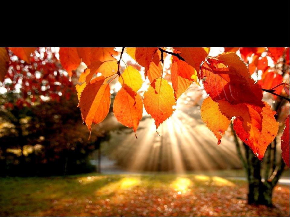 ЗАВДАННЯ: зобразити осінній пейзаж