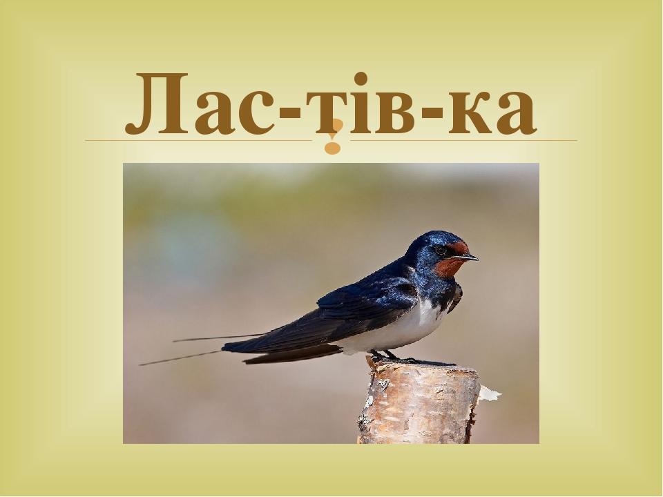 Лас-тів-ка 