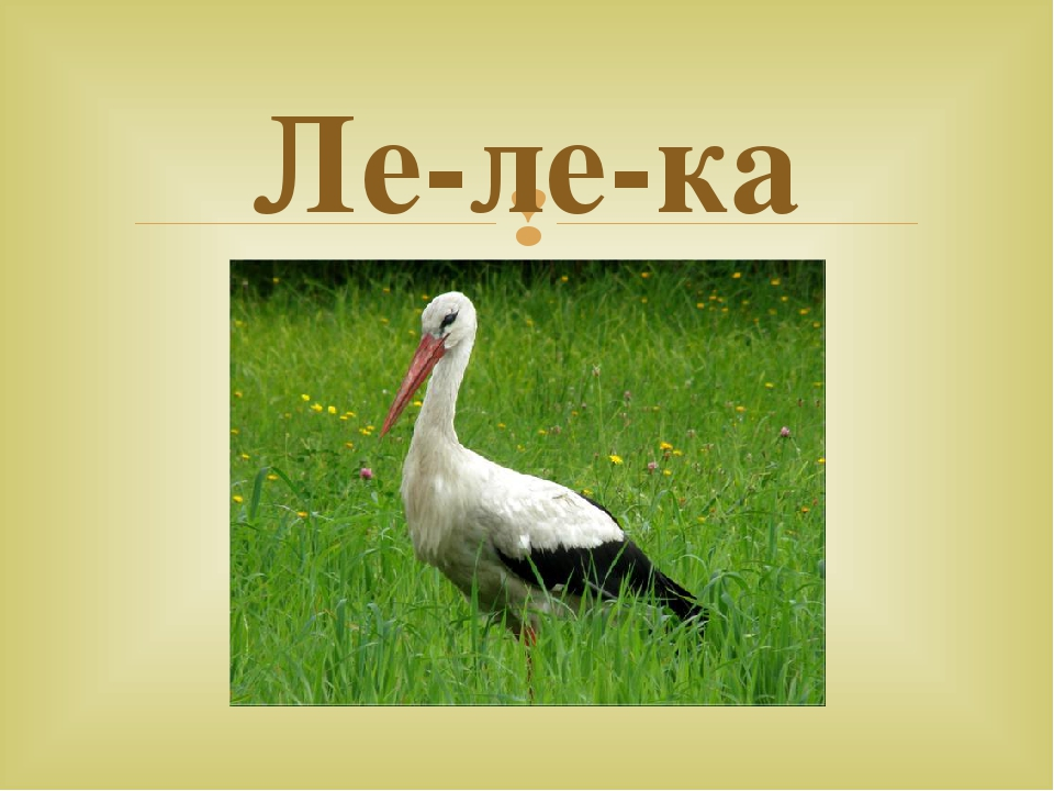 Ле-ле-ка 