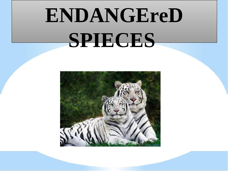ENDANGEreD SPIECES