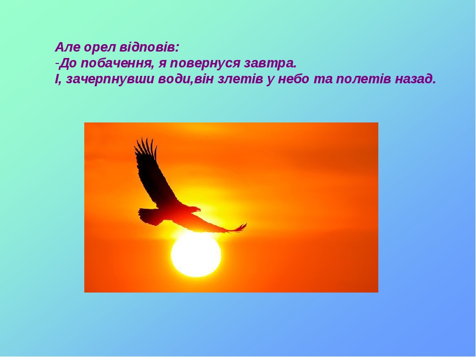 Але орел відповів: До побачення, я повернуся завтра. І, зачерпнувши води,він злетів у небо та полетів назад.