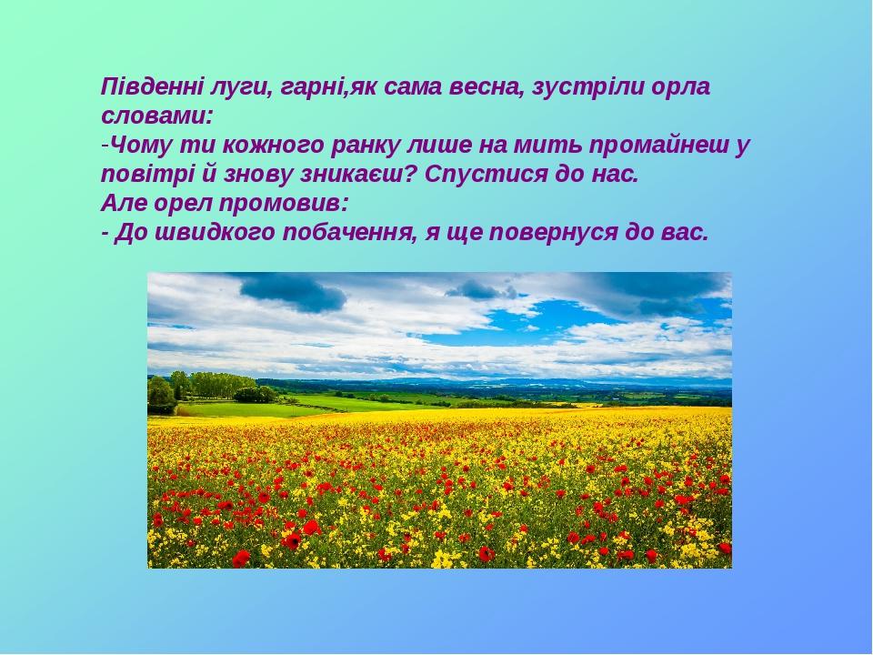 Південні луги, гарні,як сама весна, зустріли орла словами: Чому ти кожного ранку лише на мить промайнеш у повітрі й знову зникаєш? Спустися до нас....