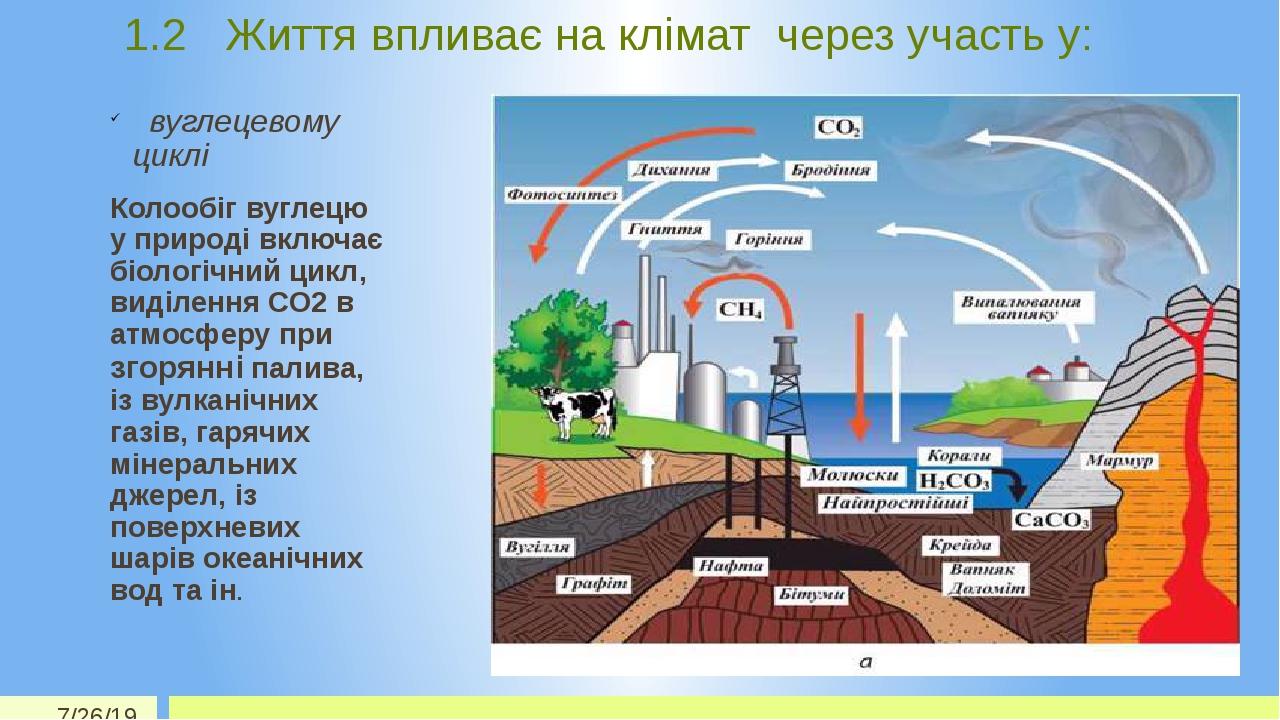 1.2 Життя впливає на клімат через участь у: вуглецевому циклі Колообіг вуглецю у природі включає біологічний цикл, виділення СО2 в атмосферу при зг...