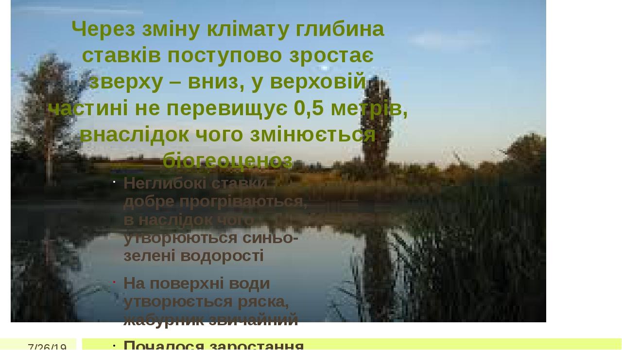 Через зміну клімату глибина ставків поступово зростає зверху – вниз, у верховій частині не перевищує 0,5 метрів, внаслідок чого змінюється біогеоце...