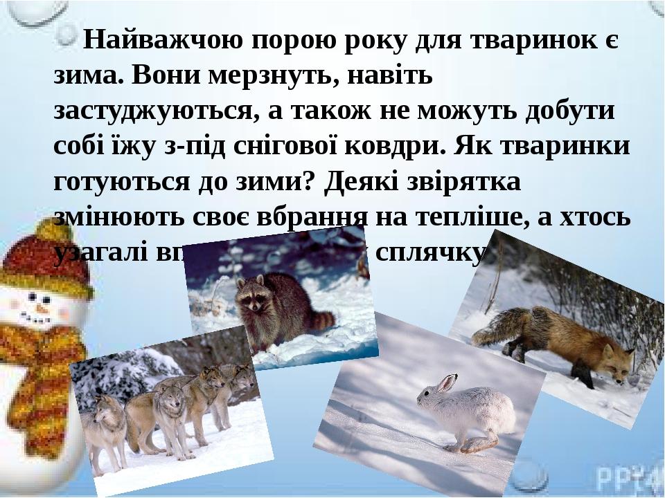 Найважчою порою року для тваринок є зима. Вони мерзнуть, навіть застуджуються, а також не можуть добути собі їжу з-під снігової ковдри. Як тваринки...