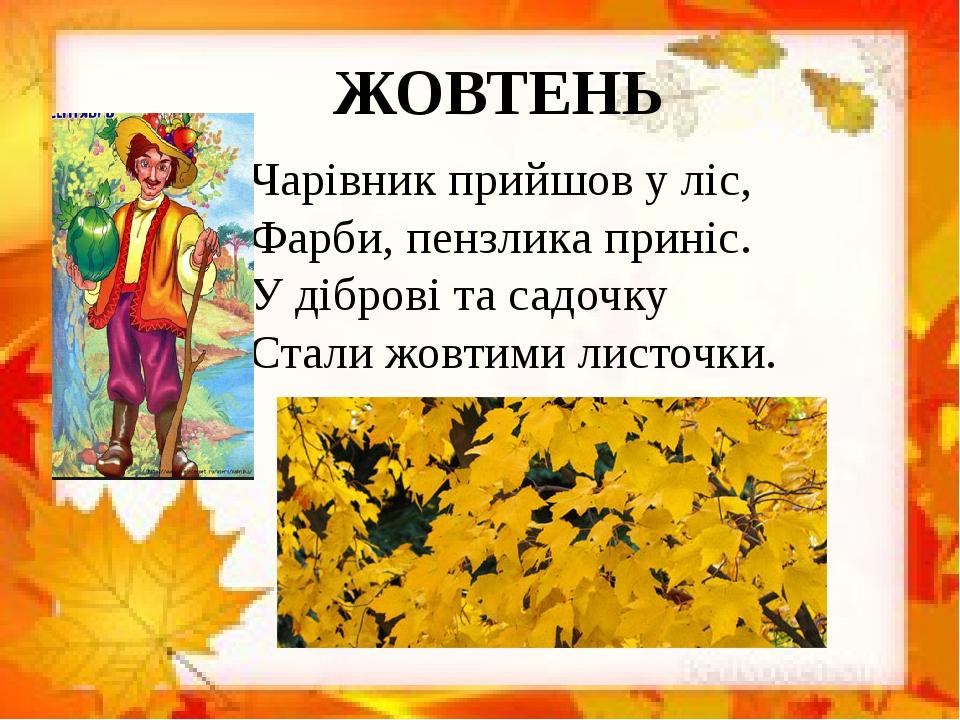 ЖОВТЕНЬ Чарівник прийшов у ліс, Фарби, пензлика приніс. У діброві та садочку Стали жовтими листочки.