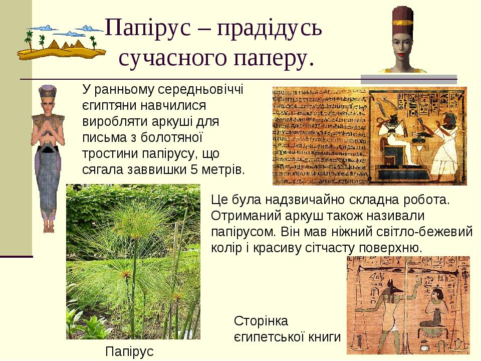 Папірус – прадідусь сучасного паперу. У ранньому середньовіччі єгиптяни навчилися виробляти аркуші для письма з болотяної тростини папірусу, що сяг...