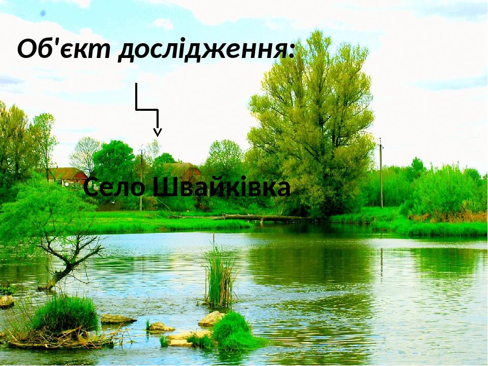 Об'єкт дослідження: Село Швайківка