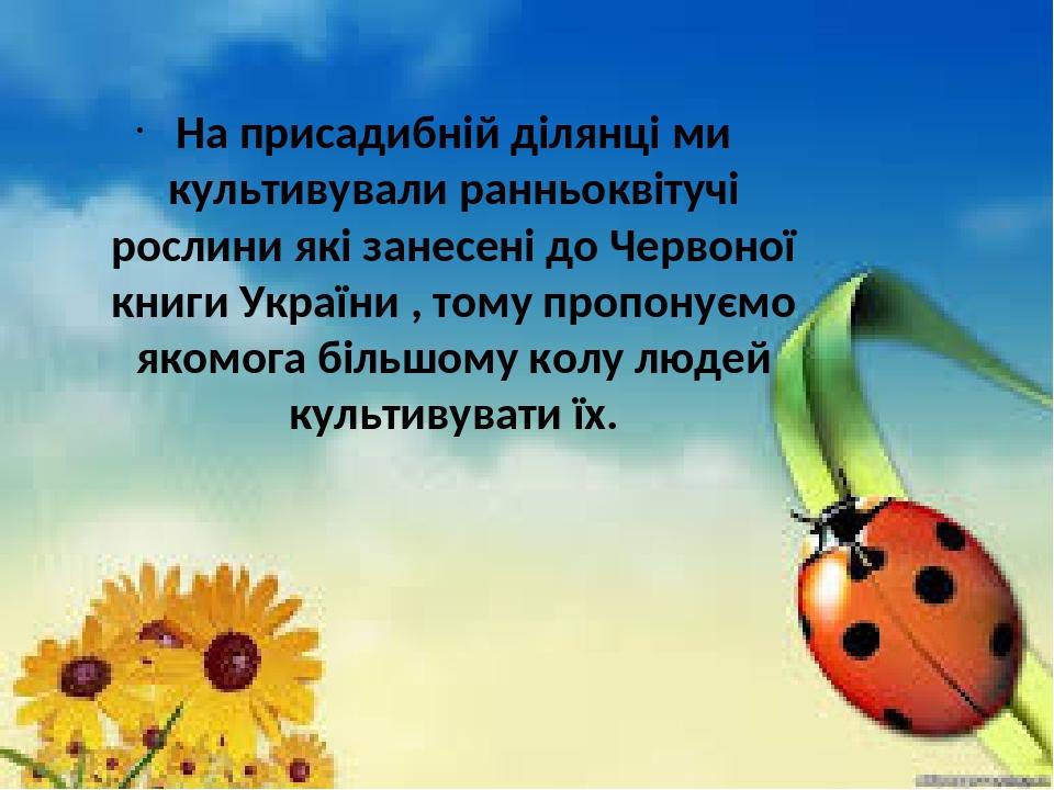На присадибній ділянці ми культивували ранньоквітучі рослини які занесені до Червоної книги України , тому пропонуємо якомога більшому колу людей к...