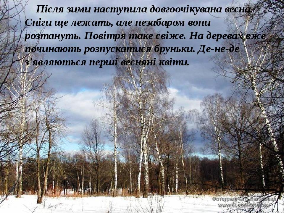 Після зими наступила довгоочікувана весна. Сніги ще лежать, але незабаром вони розтануть. Повітря таке свіже. На деревах вже починають розпускатися...