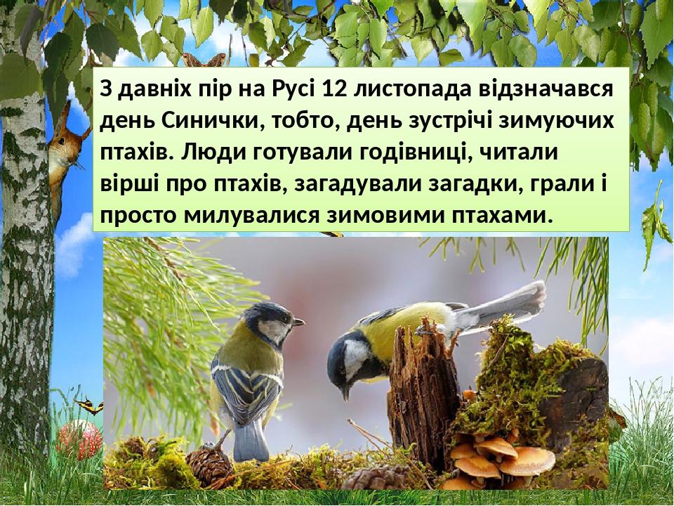 З давніх пір на Русі 12 листопада відзначався день Синички, тобто, день зустрічі зимуючих птахів. Люди готували годівниці, читали вірші про птахів,...