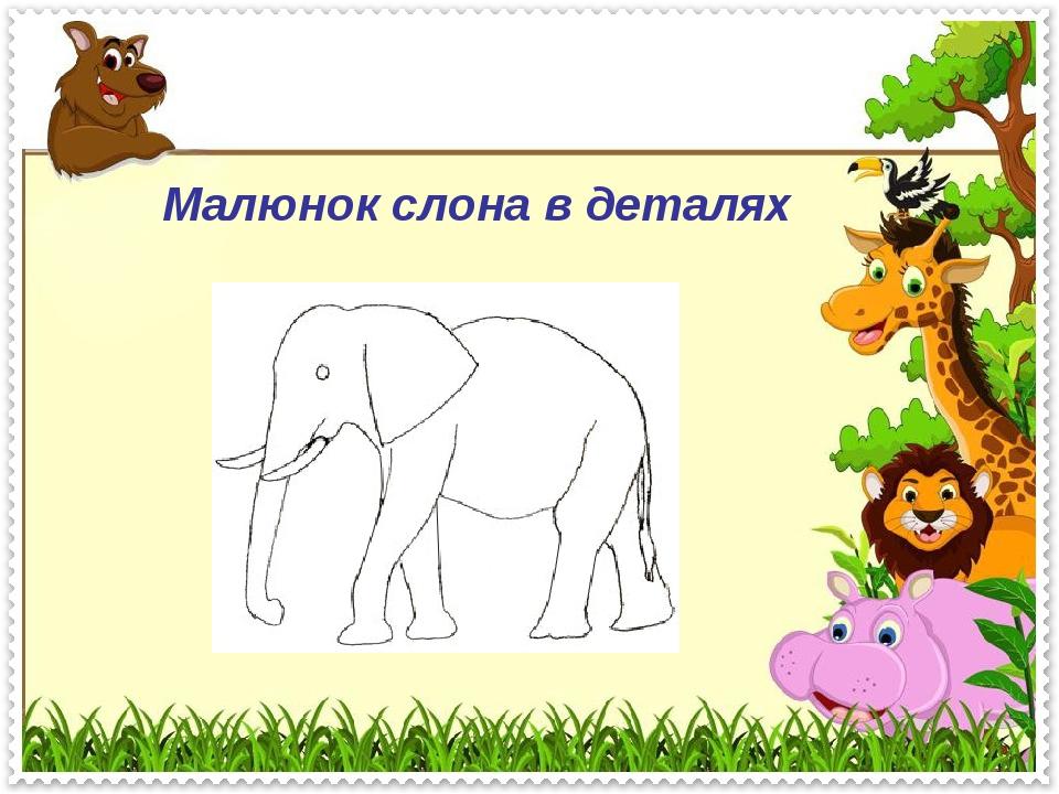 Малюнок слона в деталях