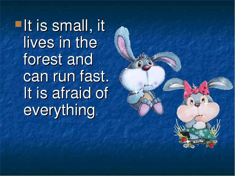 It is small, it lives in the forest and can run fast. It is afraid of everything.