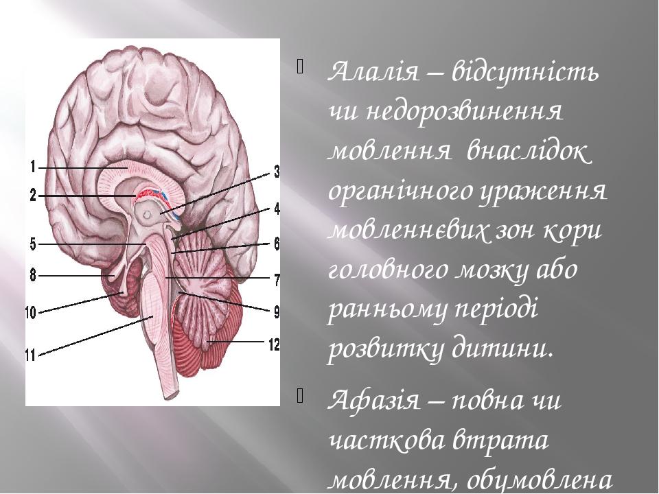 Алалія – відсутність чи недорозвинення мовлення внаслідок органічного ураження мовленнєвих зон кори головного мозку або ранньому періоді розвитку д...